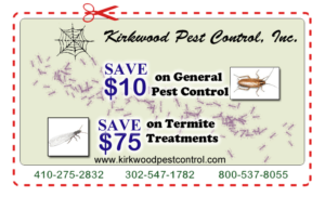 pest-coupon